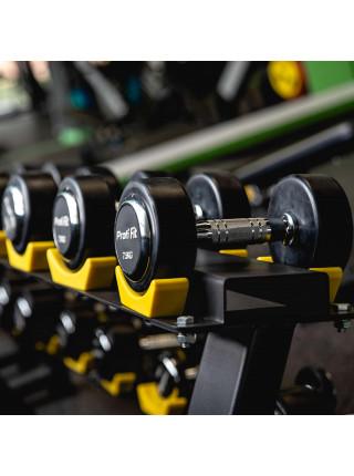 Гантельный ряд PROFI-FIT PROFESSIONAL 2,5 кг - 25 кг (10 пар), шаг 2,5 кг