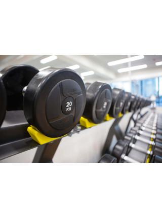 Гантельный ряд PROFI-FIT POWER 40 кг - 50 кг (5 пар), шаг 2,5 кг
