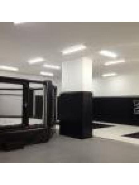 Клетка для ММА диам. 6 м., на малом подиуме 0,5 м.