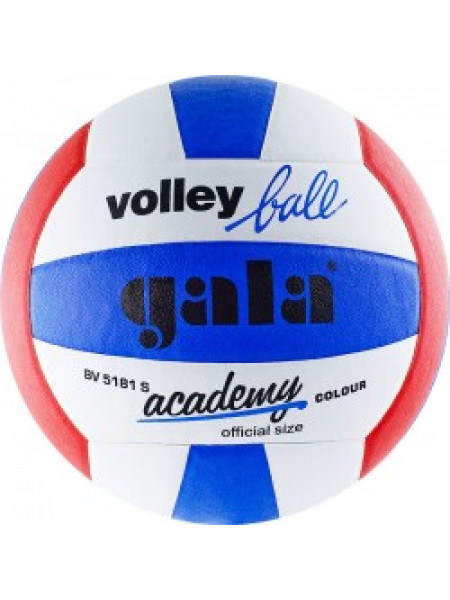 """Мяч вол. """"GALA Academy"""""""